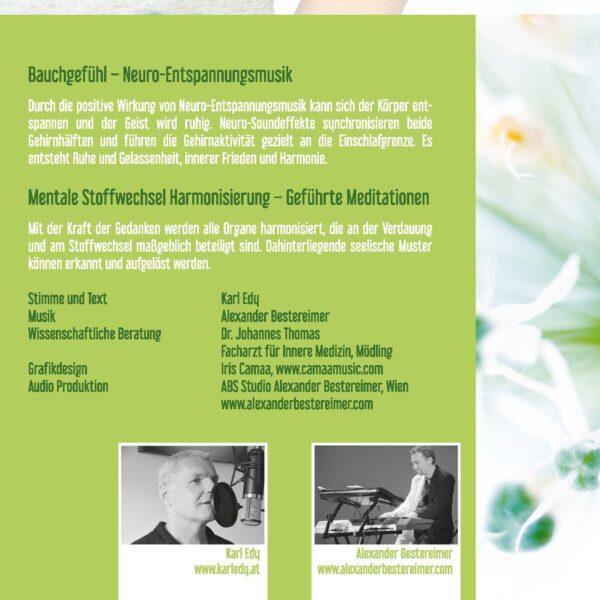 Cover Bauchgefuehl 2
